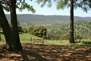 Story Winery. findingourwaynow.com