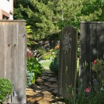 A Morning In A Garden, findingourwaynow.com