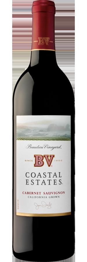 BV Coastal, findingourwaynow.com
