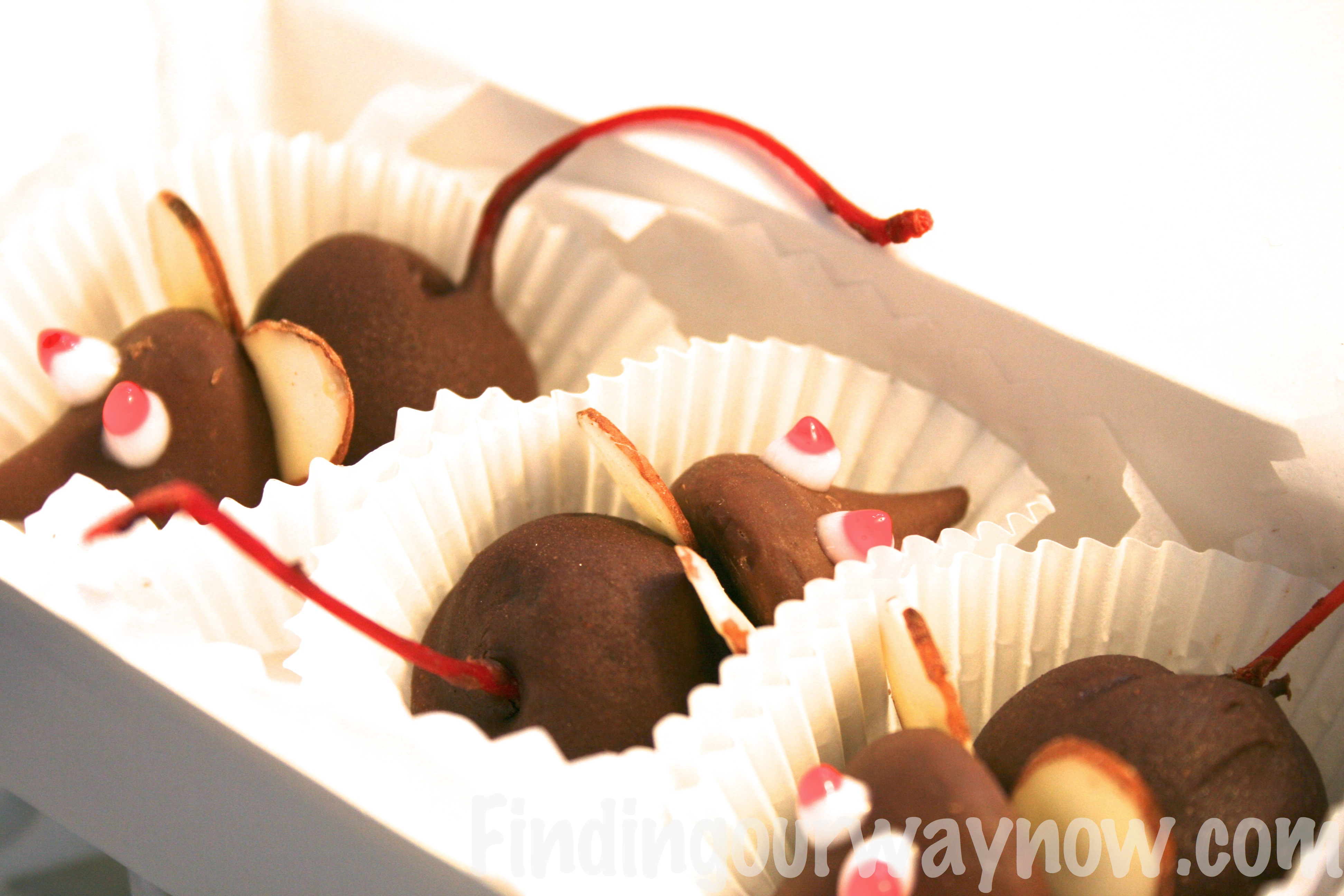 decorative box of Chocolate Cherry Mice Candy makes a delightful ...