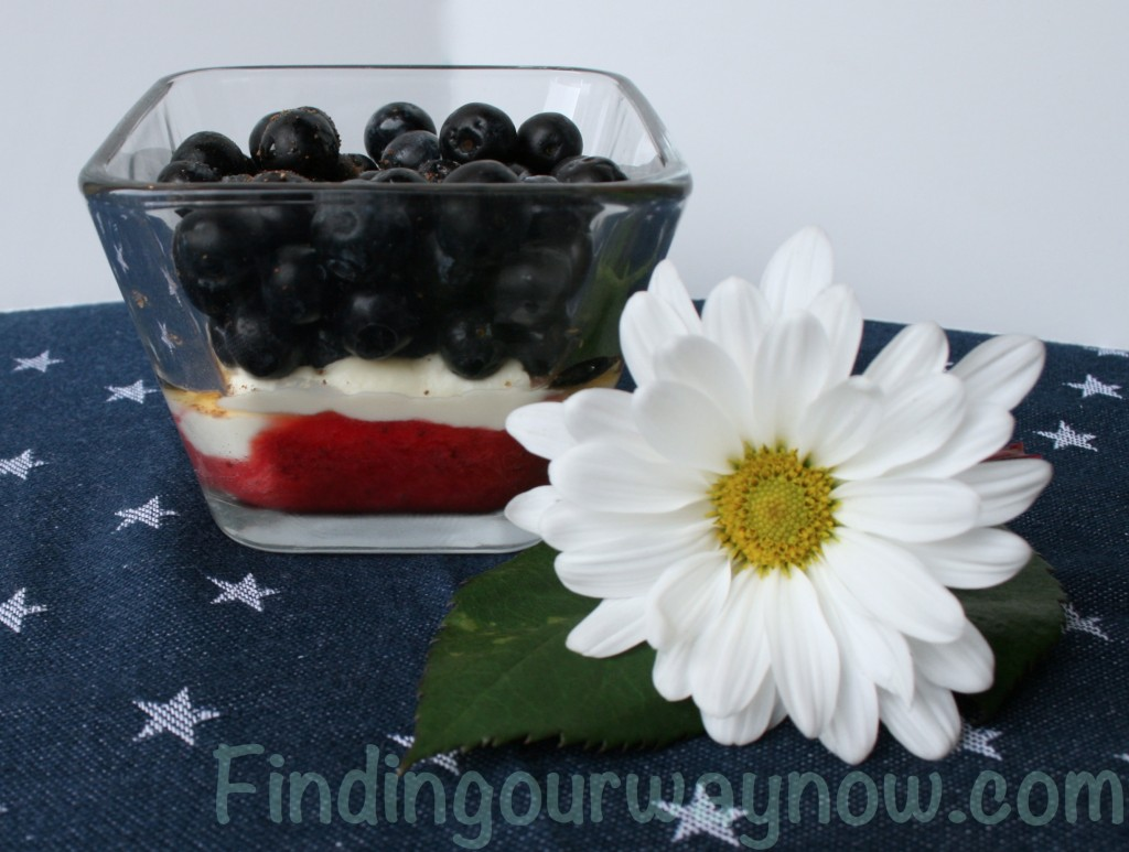 Red White and Blue Delight, findingourwaynow.com