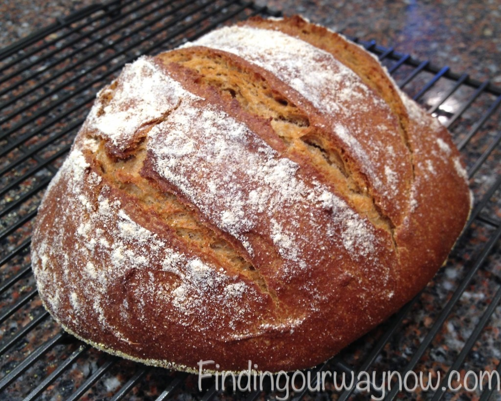 Homemade Whole Wheat Bread, findingourwaynow.com
