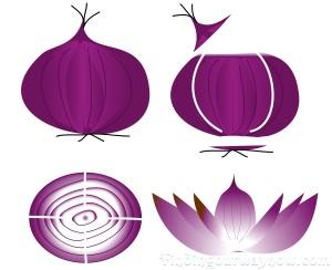 Roasted Onion Flowers, findingourwaynow.com