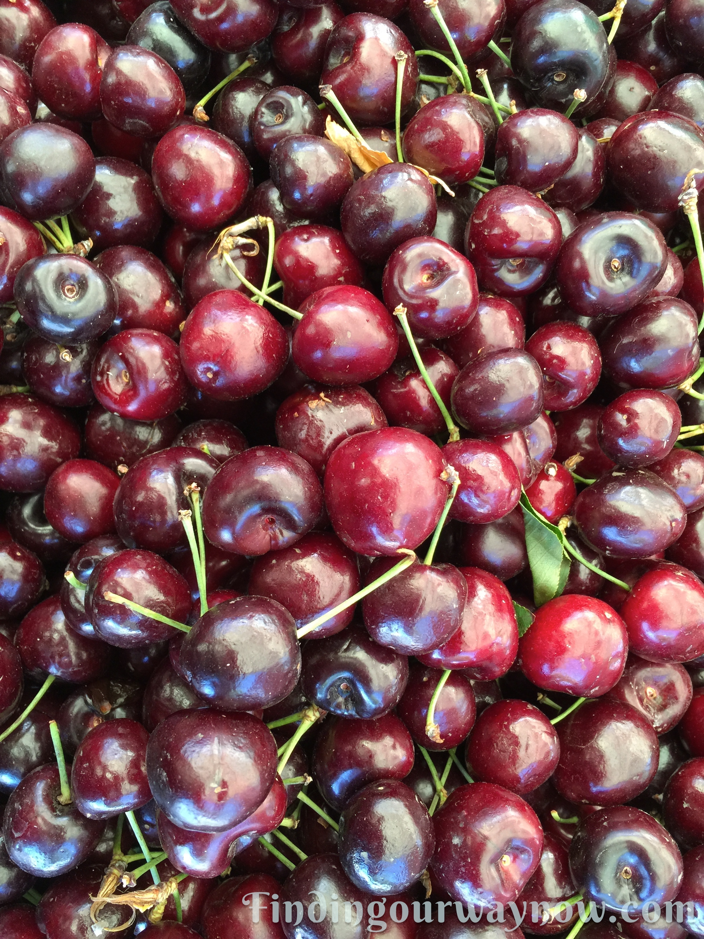 Homemade Cherry Liqueur: #Recipe - Finding Our Way Now