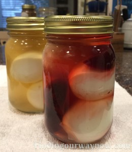 Pickled Eggs, findingourwaynow.com