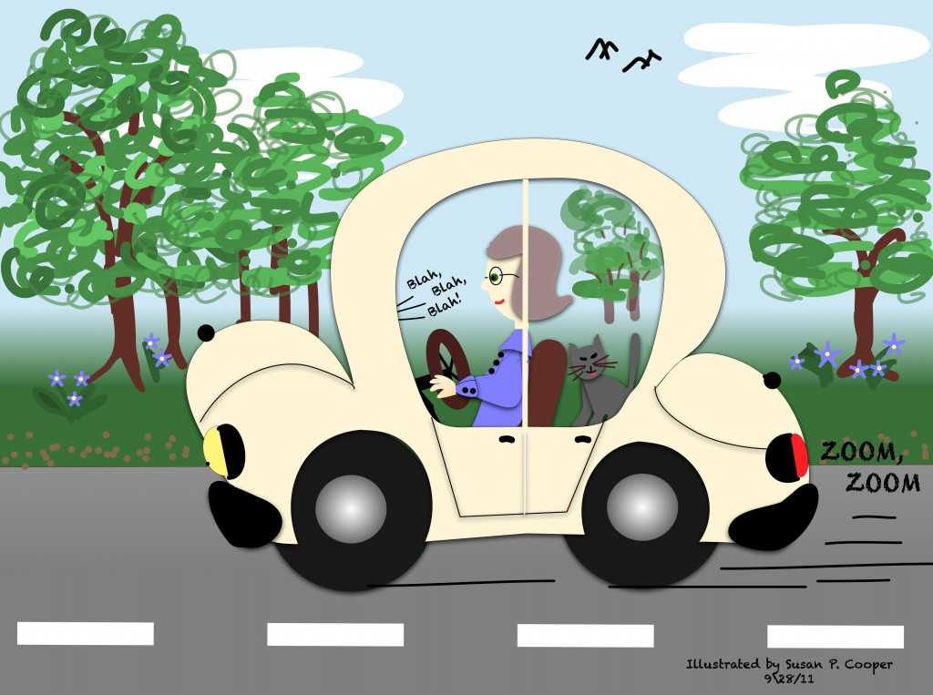 Road Trip, Cat, A Little Faith, findingourwaynow.com