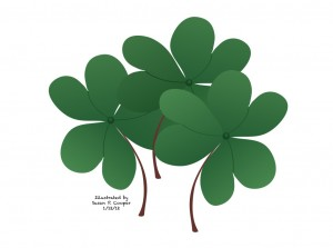 Irish Wish, findingourwaynow.com