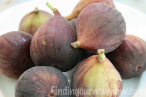 Fresh Fig Jam, findingourwaynow.com