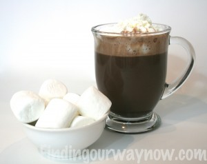 Homemade Hot Cocoa Mix, findingourwaynow.com