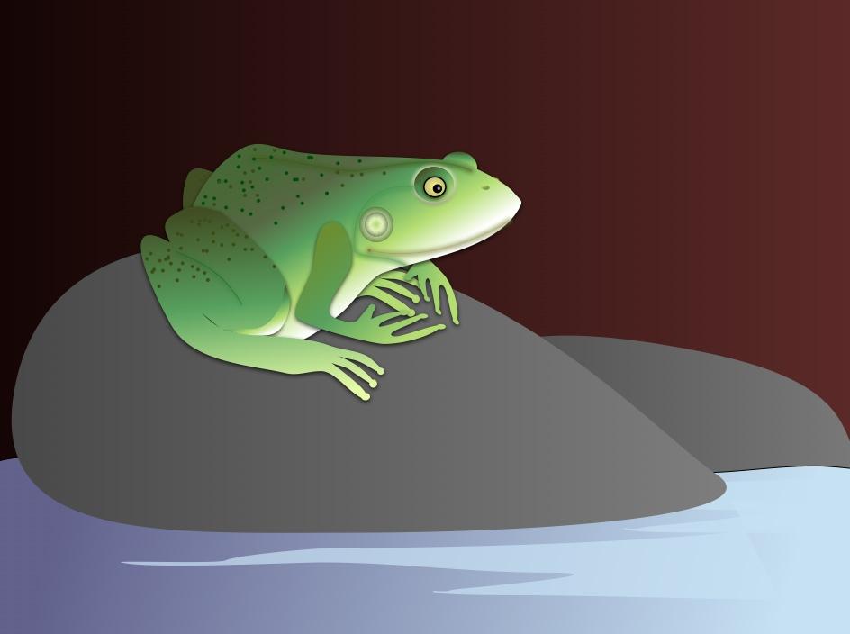 Springhouse Frog, findingourwaynow.com