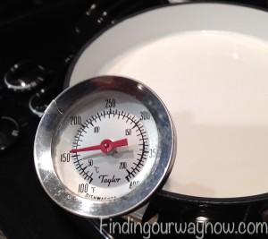 Homemade Yogurt, findingourwaynow.com