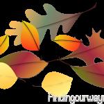 Color Fades, findingouwaynow.com