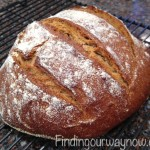 Homemade Whole Wheat Bread, findingourwaynow.com