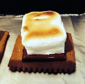 Homemade S'mores, findingourwaynow.com