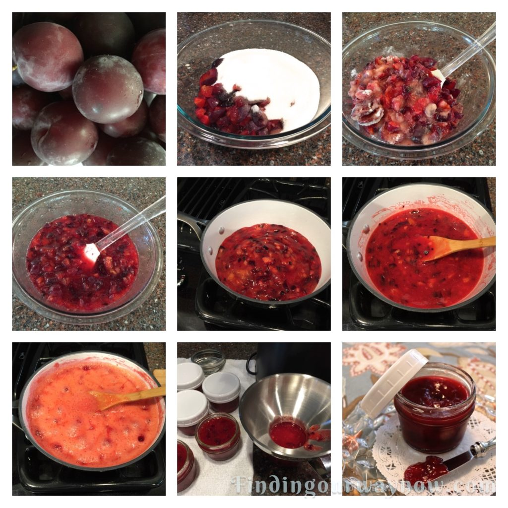 Homemade Plum Freezer Jam