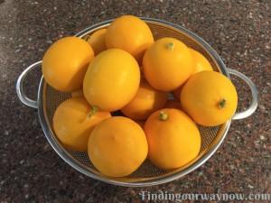 Preserved Lemons, findingourwaynow.com