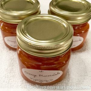 Orange Marmalade, findingourwaynow.com